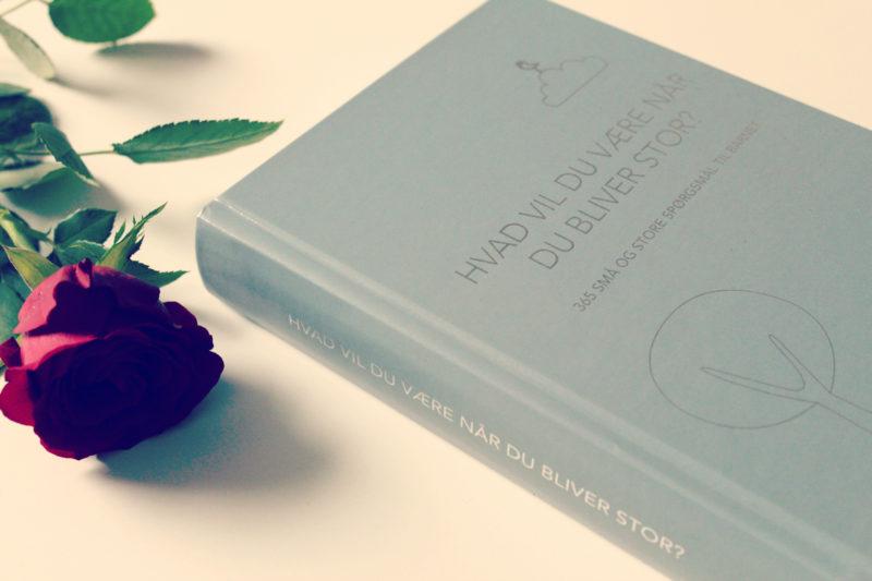 Bogen fås i tre farver - grå, lyserød og blå. Denne er den grå.